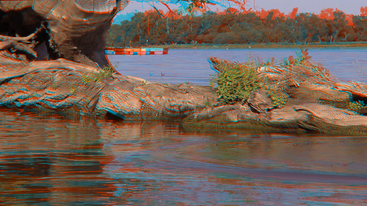... in 3D... grab your red/blue anaglyph glasses!-hd100-3d-test-6.jpg