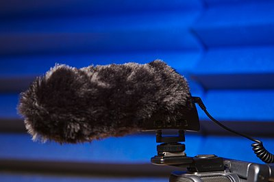 Worthwhile To Attach External Mic to Canon HG20?-mke400withhairy.jpg