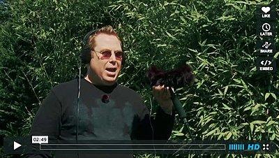 SHOOTOUT of the MINI SHOTS! • MKE400 • VideoMic Pro • Que • VideoMic-hedge.jpg
