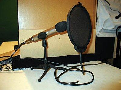 Advice for home recording studio?-pop-filter-2.jpg