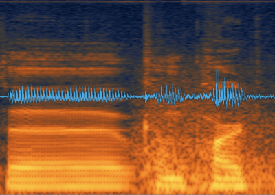 Identifying offending noise by using spectral frequency display-bang.png