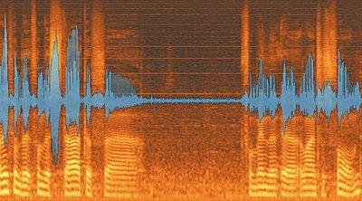 High-pitched audio whine-jody-audio-harmonics.jpg