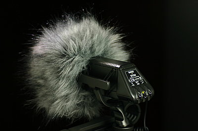 Finally saw Rode Stereo Videomic(SVM), am I the only one who thinks it's really ugly?-svm_rear.jpg