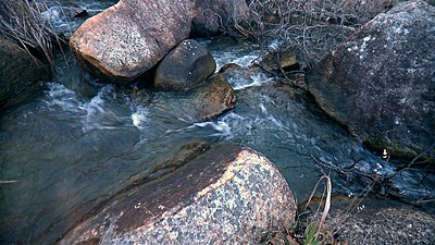 Roiding The Extreme-stony-gully-retro-02.jpg