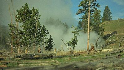 Yellowstone, Jackson Hole, Letus, Oh My-snapshot20070916082510.jpg