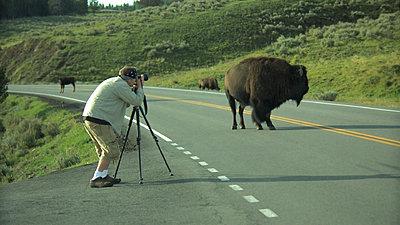 Yellowstone, Jackson Hole, Letus, Oh My-snapshot20070916082729.jpg