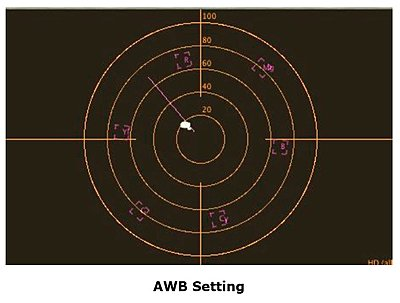 Sony SR11/12 Twilight Mode-picture-6.jpg