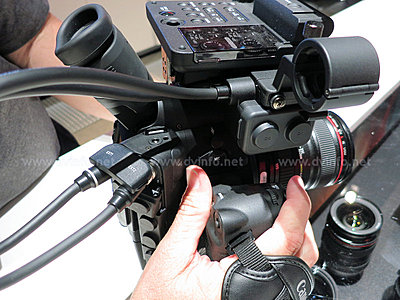Does Canon ever talk to their customers?-c300-xlr1.jpg