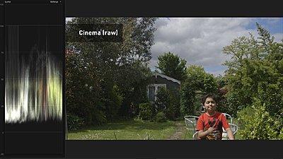 Canon C100 & Sony PMW 200-c100.084.jpg