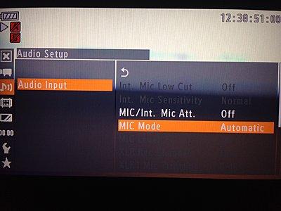 External Mic Mode Setting C100-photo-1.jpg