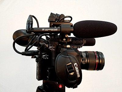 Canon XF300 VS. C200-camera3.jpg