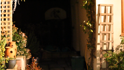 7D video : big pixel in low light ! ISO ? or ...-mvi_0261-xdcam-noise.png