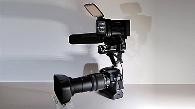 T2i + Sigma 18-250mm + XH-A1 Lens Hood-sigma6.jpg