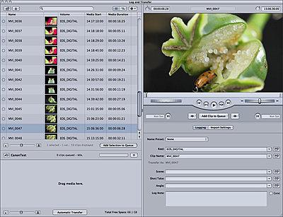 GlueTools D-SLR Log & Transfer Plugin for Final Cut Pro-rad_panel.jpg
