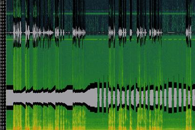 Canon 5D Mark II Audio Exposed; with BeachTek DXA-5D and juicedLink CX231-stock-fw.png