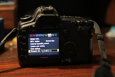 Magic Lantern and Canon's 2.0.4 firmware-ml-204.jpg