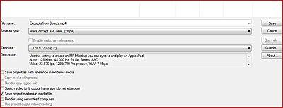 Serreted edge 24 fps-frontsettingsmp4.jpg