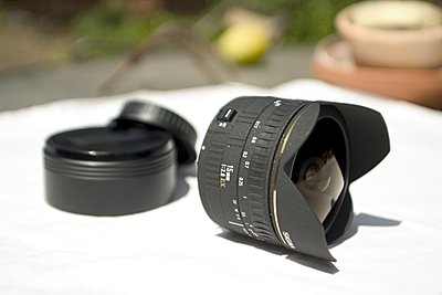 5d Video shooting and shutter speeds and wide angle lens recommendation-sigma-15mm.jpg
