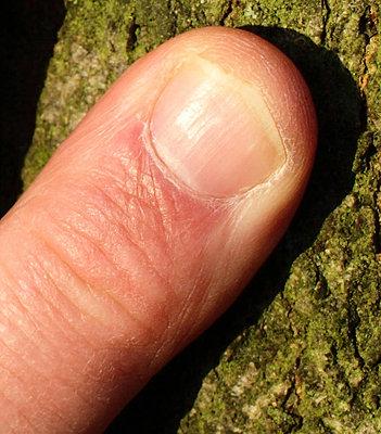 LENSES FOR STILLS & VIDEO an alternative view-pentax-67-45mm-hand-finger-crop.jpg