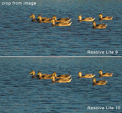 Resolve Lite 10 fixes pink fringing issues with 5D raw files-resolve-10-fix-ducks4.jpg