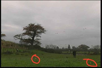 XM1 (GL1) glitches?? (See images)-g2.jpg
