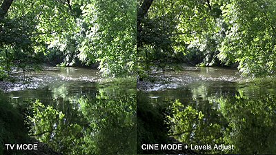 HV20 cine mode more dynamic range?-streamcomp.jpg