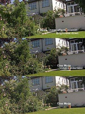 HV20 cine mode more dynamic range?-comparisions.jpg
