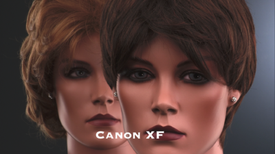 Raw samples of Canon XF300 & Sony EX1R-canon-skin.png
