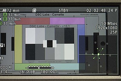 Does the Vectorscope Have Adjustable Gain?-dclab-xf300.jpg