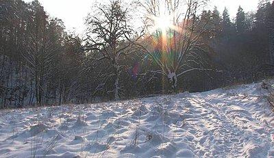 winter's walking-winter_002.jpg
