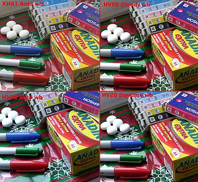 Colour matching HV30 and XH-A1-xha1-hv20-daylight.jpg