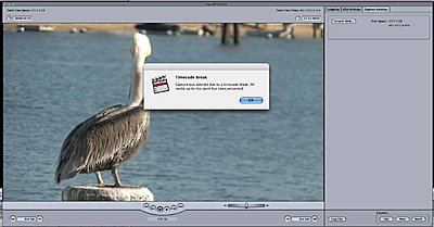 importing footage???-picture-15.jpg