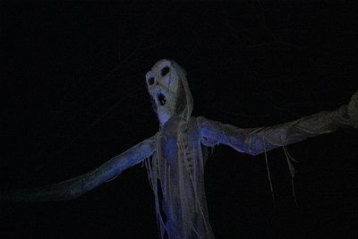 Preset for working in dark environment-ghost.jpg