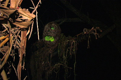 Preset for working in dark environment-monster.jpg