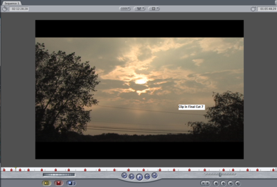 Thick black border around video in Final Cut. Why and how do I get rid of it?-screen-1_1.png