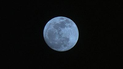 Blue Moon-img_0470.jpg