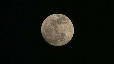 Blue Moon-img_0463.jpg