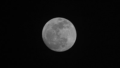 Blue Moon-img_0468.jpg