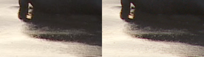 SxS vs Nanoflash stills:  Elephant Seals-snout_0003_l-ex1_r-nano_2x.png