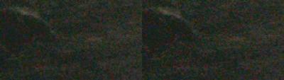 SxS vs Nanoflash stills:  Elephant Seals-leftcorner_0004_l-ex1_r-nano_2x_bright.png