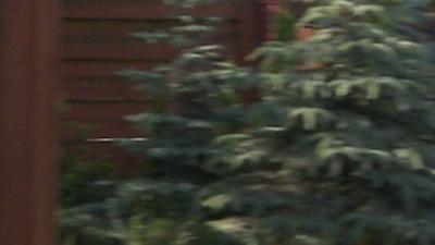 Noise comparison: 35/4:2:0 vs. 180/4:2:2-ex1-motion-blur.png