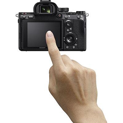 Sony A7R III-1508916663000_img_888343.jpg