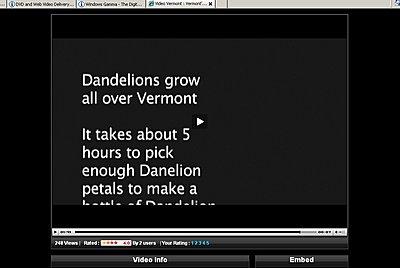 Windows Gamma-dandelions.jpg
