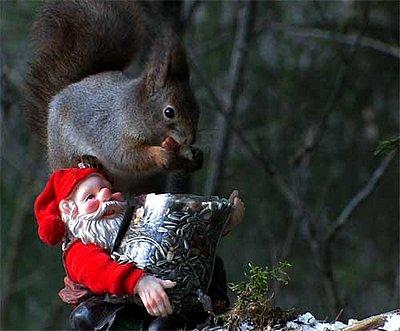 Tales of wonder and woe: DVC/UWOL Charity Challenge-santa-squirrel.jpg