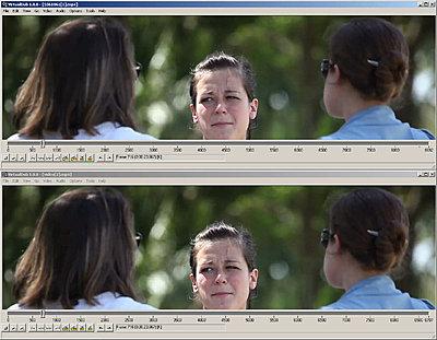 """""""The Food Police"""", a 48 hour-like film-hdcomparison1.jpg"""