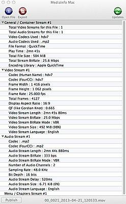 HDV audio issue-rewrap-info.jpg