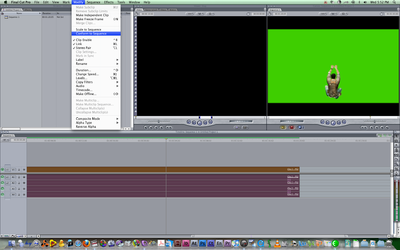 FCP Sequence Settings for NTSC Anamorphic Footage-picture-4.png