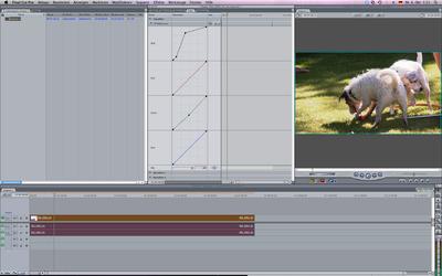 Photoshop curves for Final Cut-screenshot.png