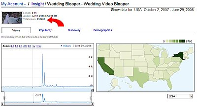 Advantages of posting movies on YouTube and Vimeo-wedding_blooper_viewing_stats.jpg