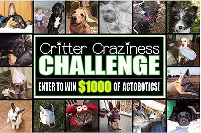 Enter to win 00 of free Actobotics parts at ServoCity !!-critter-contest.jpg